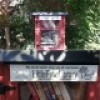 Little Libraries Becoming Big