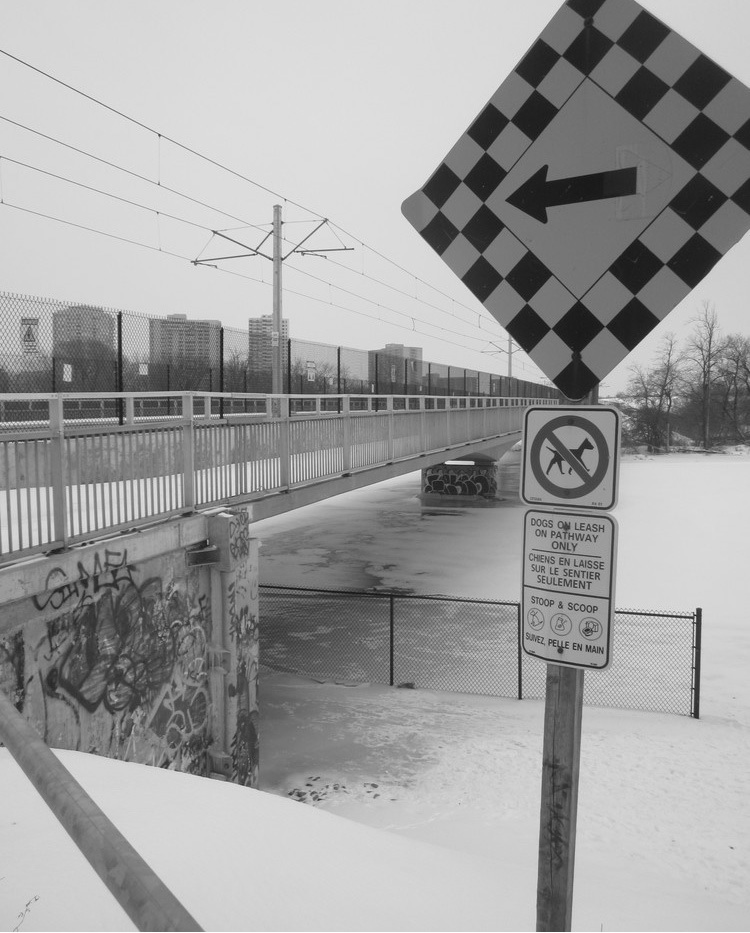 After two years of construction activity the pathway is open under the LRT Rideau River bridge but the pathways on the bridge remain indefinitely closed just like the Lees Avenue on-ramp to the eastbound Queensway.  Photo by John Dance