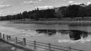 Update on the City's Draft Official Plan- Rideau Canal